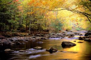 Golden-Waters-Great-Smoky-Mountains-National-Park-Tennessee